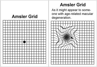 translation - grid translate | English dictionary